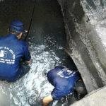 Rút hầm cầu